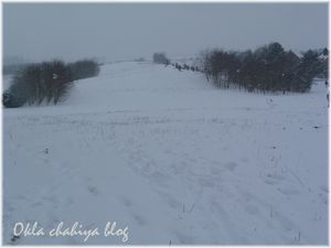 neige_3.jpg