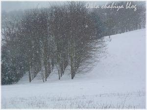 neige_4.jpg
