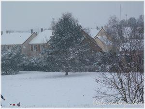 neige_5.jpg