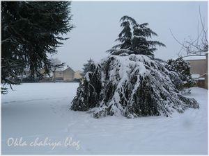 neige_6.jpg