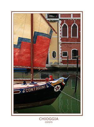 Betterave de Chioggia au marché de Venise ; étape incontournable des gourmands 5