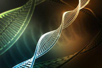 VACCINS ADN