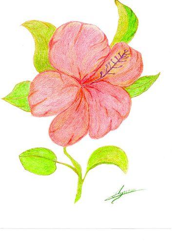 Fleur de passion - dessin aux craoyons - scanné
