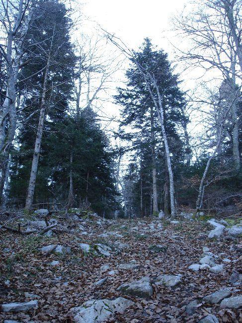 Vers le Pic du Gar : le col des Ares (797 m) 9
