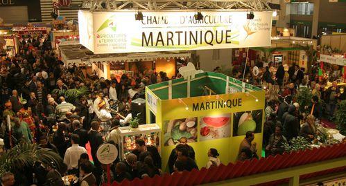 Espace-Martinique.jpg