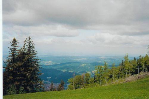 schwarzwald.JPG