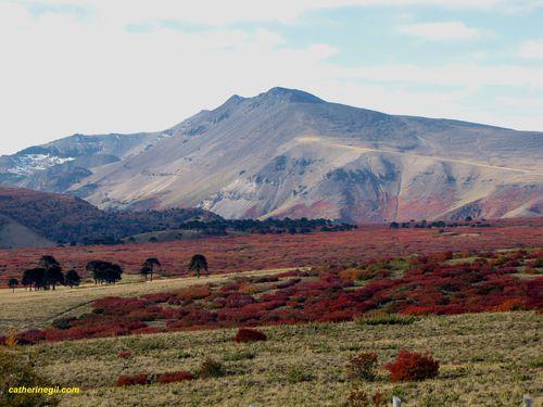 De Pucon à Mendoza