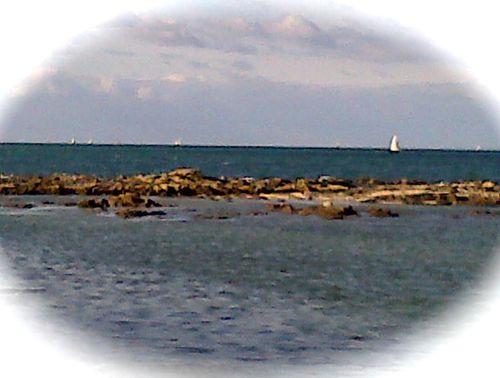 La-Turballe-20121028-00932.jpg
