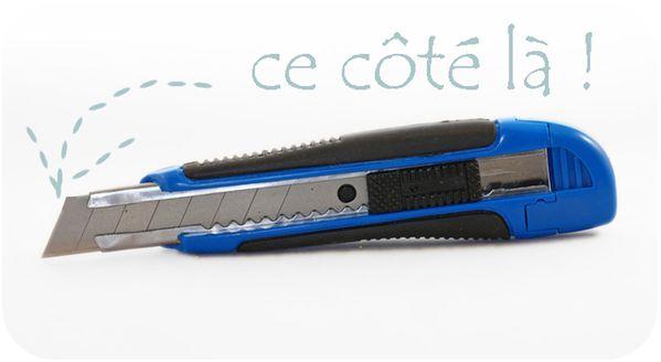 cutter_bleu-copie-1.jpg