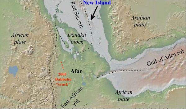 New-Island-Red-Sea---Capitalerythrea.jpg