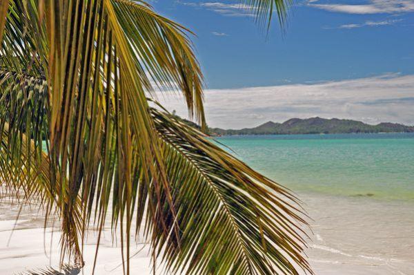 Seychelles-2012 1003