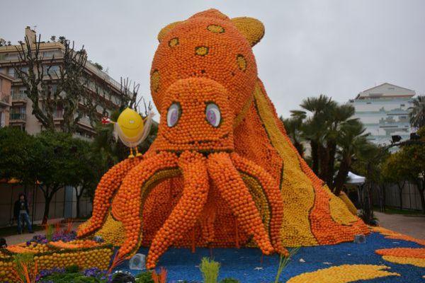 Fete-du-citron-150214-074.JPG