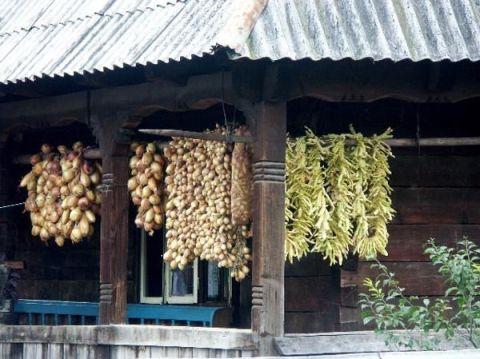Les Maramures ; terre profonde et authentique de Roumanie 6