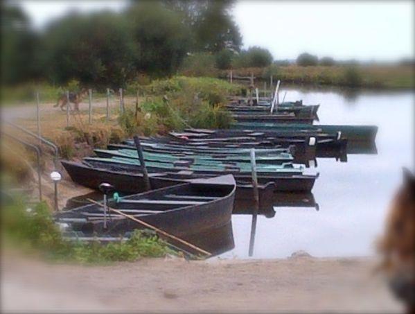 Saint-Joachim-20120901-00475.jpg