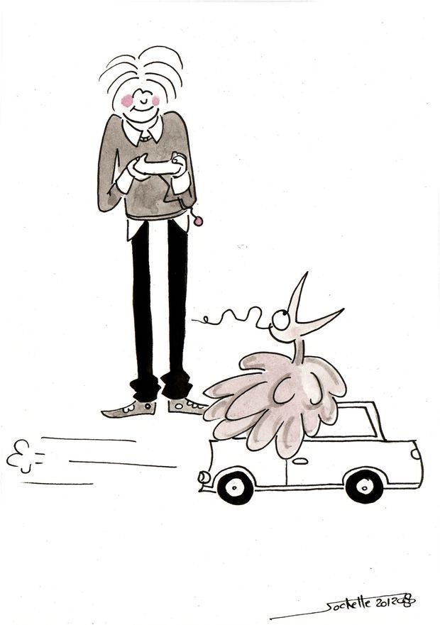 wilfried et théo - voiture télécommandée