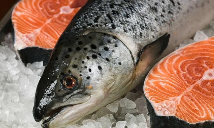Rusya'ya Balık İhracatı