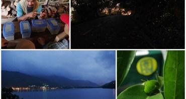 花蓮景點 鯉魚潭螢火蟲/青陽農場蝴蝶生態之旅~寓教於樂陶醉於那點點星空