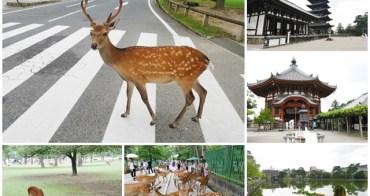 日本奈良景點 猿沢池/興福寺/五重塔/斑鳩一日券 跟小鹿玩~阿一一日本關西京阪神自助之旅
