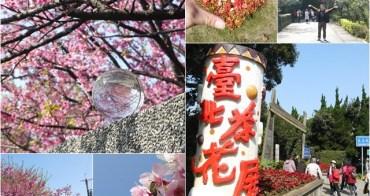 台北士林 陽明山平等里平菁街&花卉試驗中心~春日賞櫻花