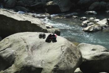 苗栗南庄 蓬萊溪護魚步道~數魚搶食土司的奇景