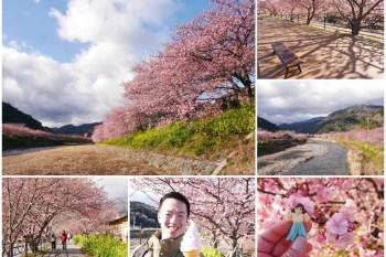 靜岡伊豆櫻花祭 河津櫻一日散策 交通方式~日本最早開的櫻花,夢幻粉紅世界