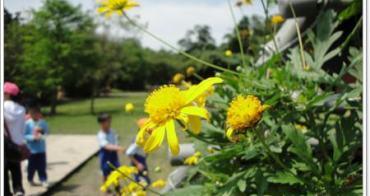 在夢的迷宮中被花團圍繞~武荖坑 2010宜蘭綠色博覽會(下)