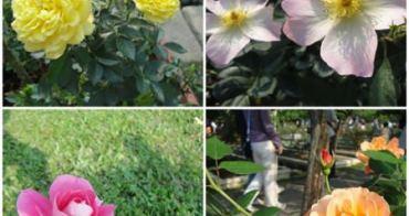 台北 士林官邸玫瑰花展~萬紫千紅的春天氣息