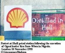 shell04.jpg