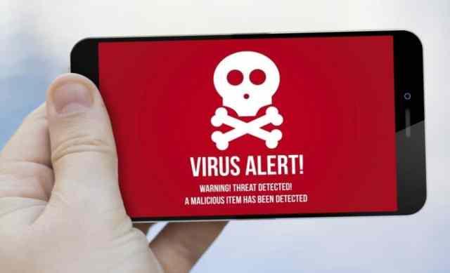 catelites bot banks malware