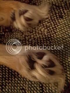 Cutest little feet ever