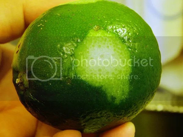 Zested lime
