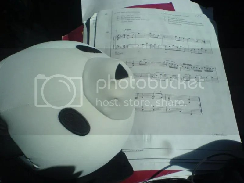 Panda-kun and Harmony homework