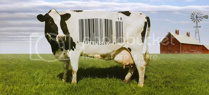 Barcode me baby