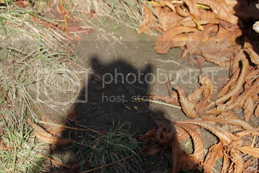 Hat shadow