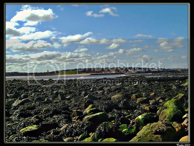 picture of South Shields and the River Tyne