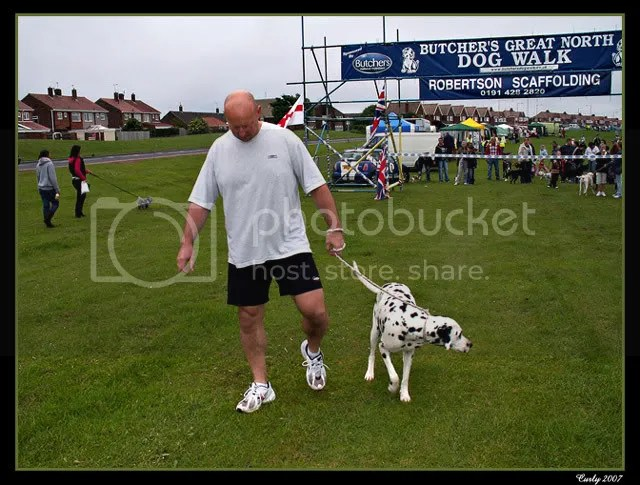 Great North Dog Walk, South Shields, doggy mile