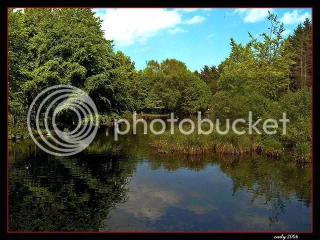 picture of lake, Hardiwick Hall, Sedgefield, County Durham