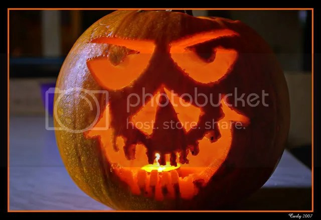 pumpkin, south shields