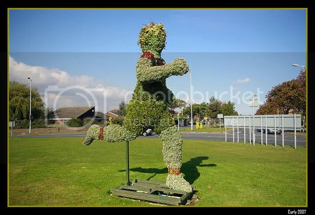 topiary in South Shields