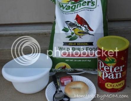 supplies for bagel birdfeeder