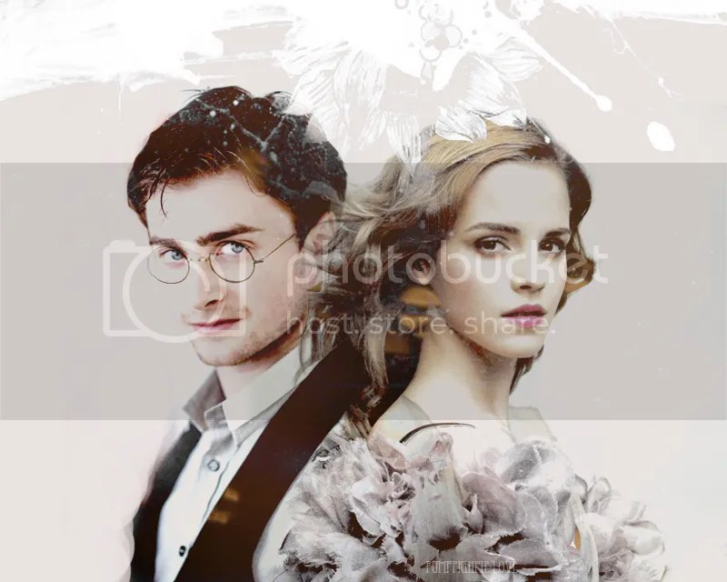 photo Harmony-Art-harry-and-hermione-26332454-800-640.jpg