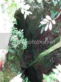 Chingwes Hole