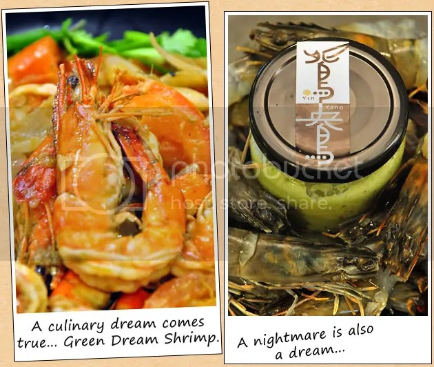 Green Dream Shrimp