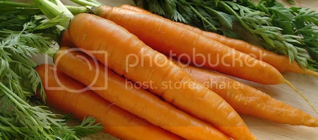photo Kripalu_Carrots_zpsyy43r8yq.jpg