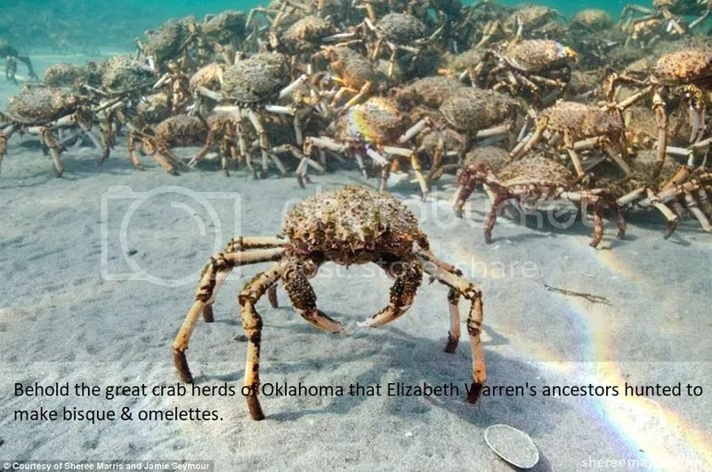 photo Crab herd_zpssug7wxqh.jpg