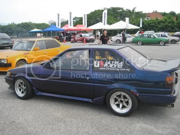 Side view of the Purple Levin