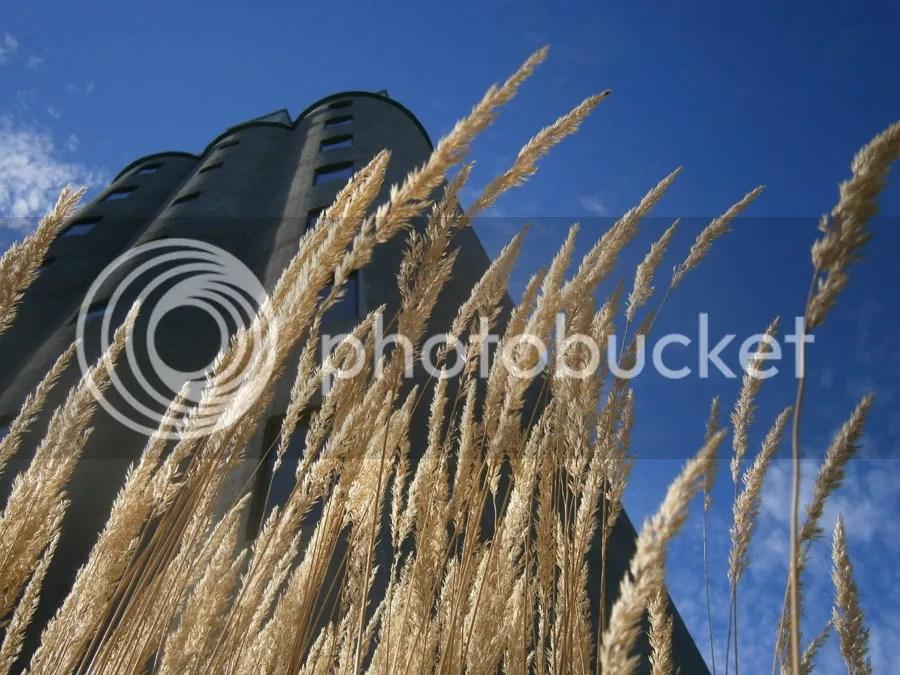 photo Pittsford Willage Grain Elevator_zpsjrofawre.jpg