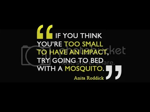 photo Quote_Anita-Roddick-on-making-an-impact_UK-3.png