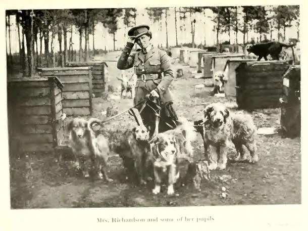 British Military Dogs and Their Trainer, World War I photo 1920WarDogs.jpg