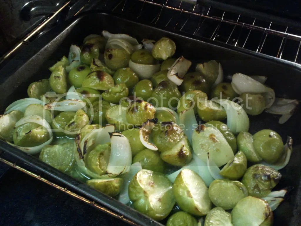 Broiled Tomatillos and Onions